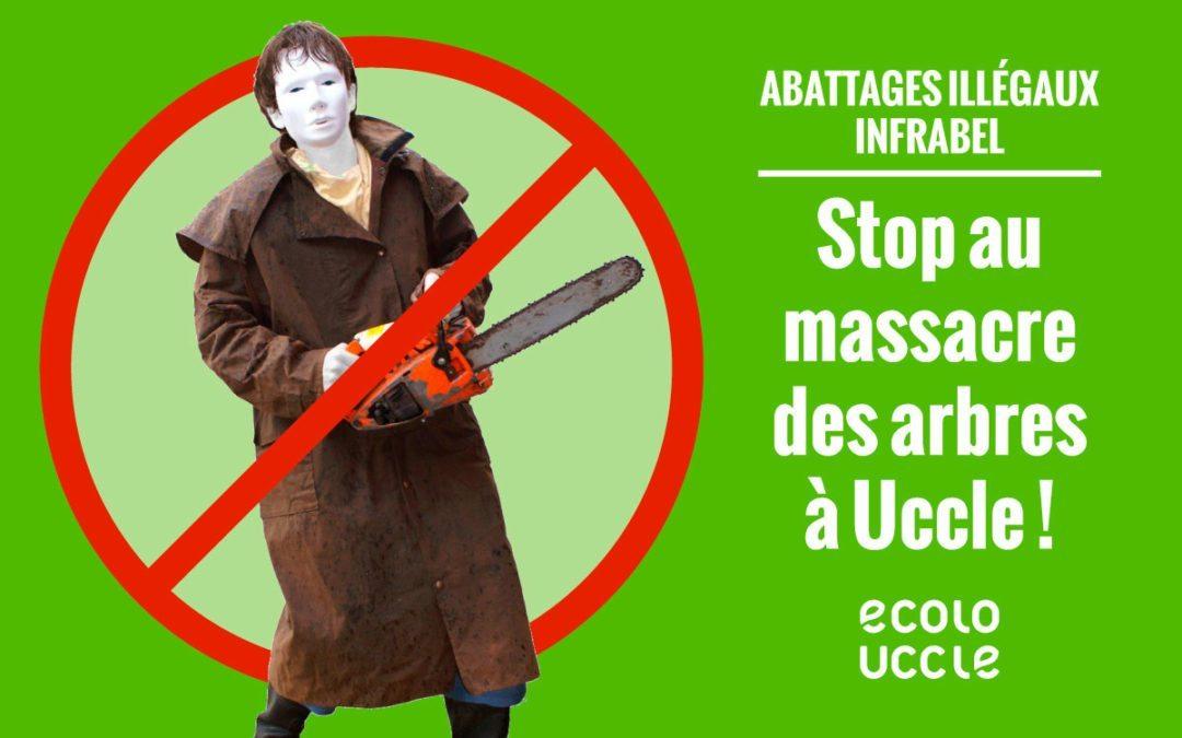 Arrêtons le massacre des arbres à Uccle !
